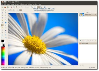 Paint Net For Xubuntu