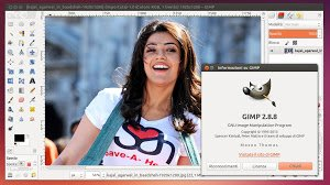 gimp-2.8.8-ubuntu