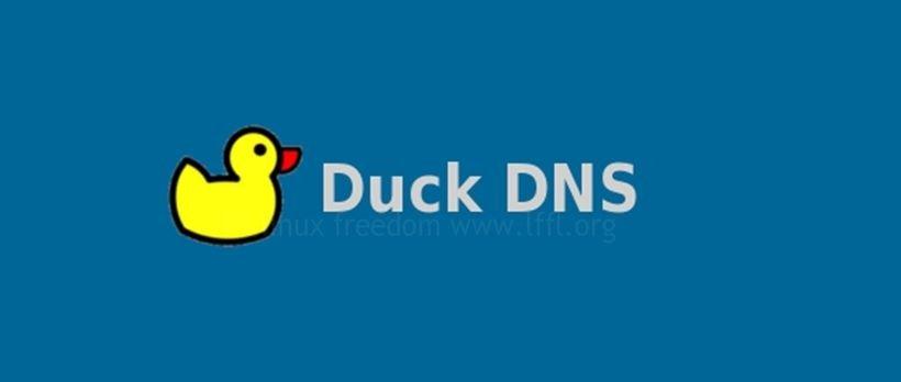 duck_dns