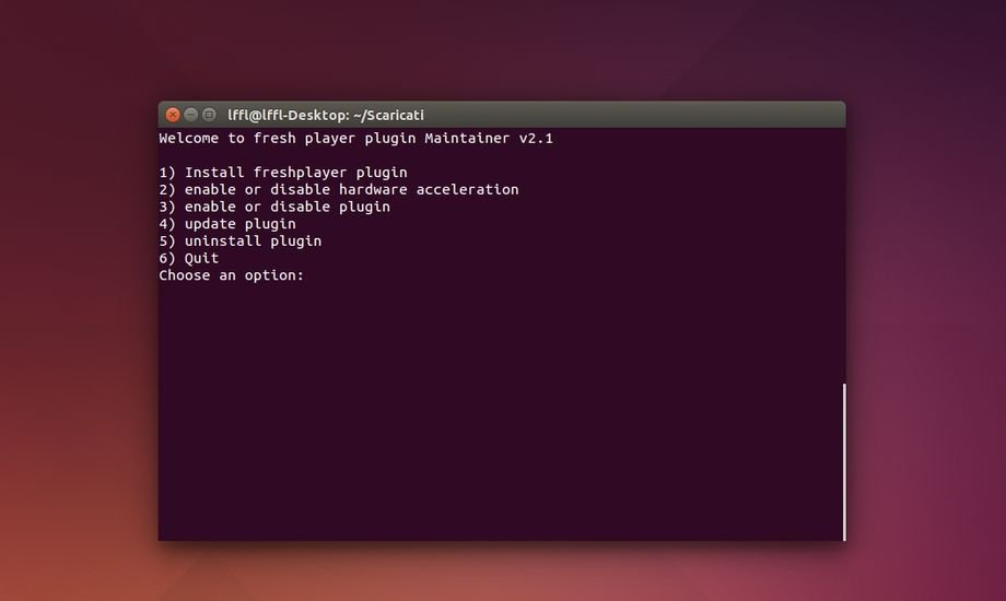freshplayer_maintainer_ubuntu