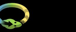 python-pypy-logo