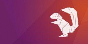 ubuntu-16.04-xenial-xerus