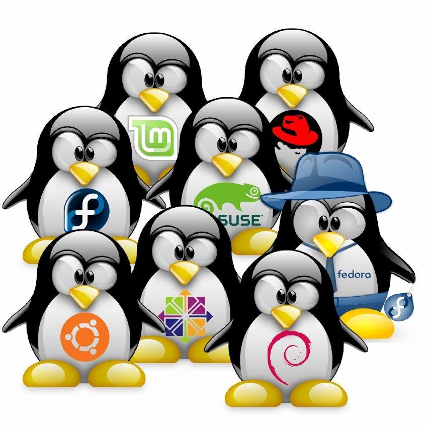 numeri linux