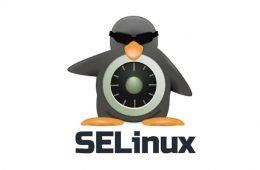 SELinux-0