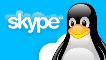 skype v1.3