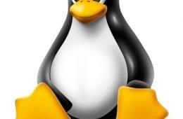 linux RC5 kernel 4.8