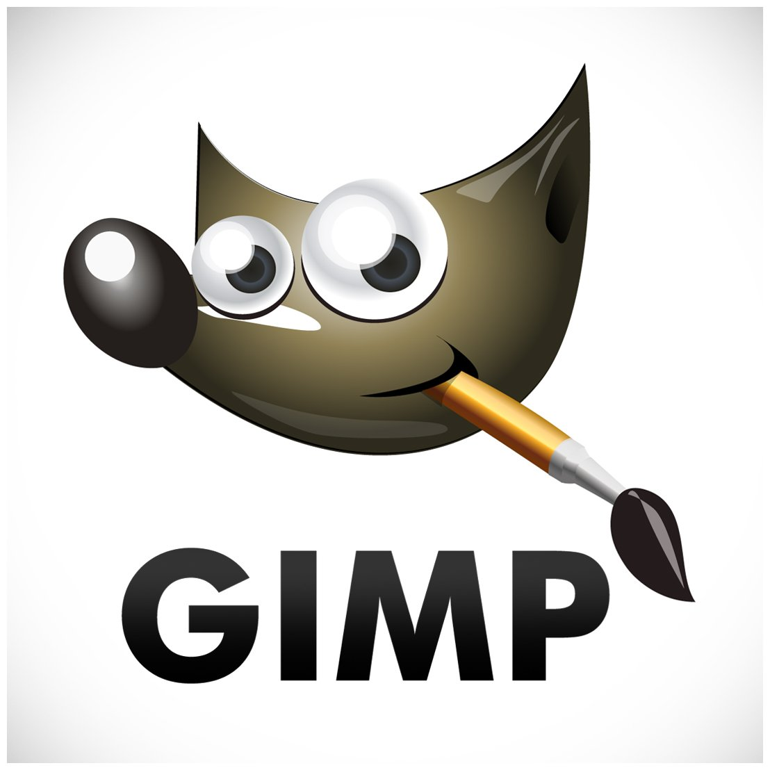 open365 gimp