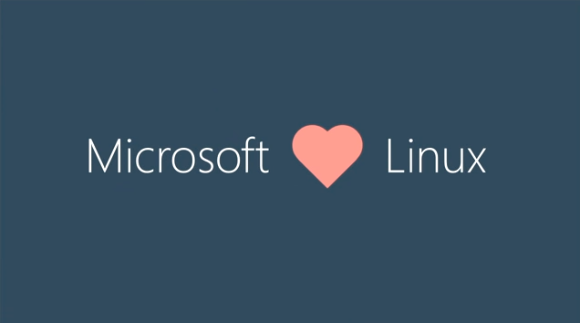 mic linux