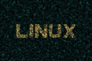 kernel linux 5.0