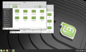 linux mint 19.1