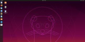 ubuntu 19.10 eoan ermine beta