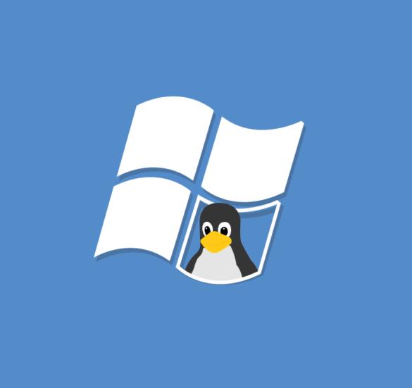 linux windows kali undercover