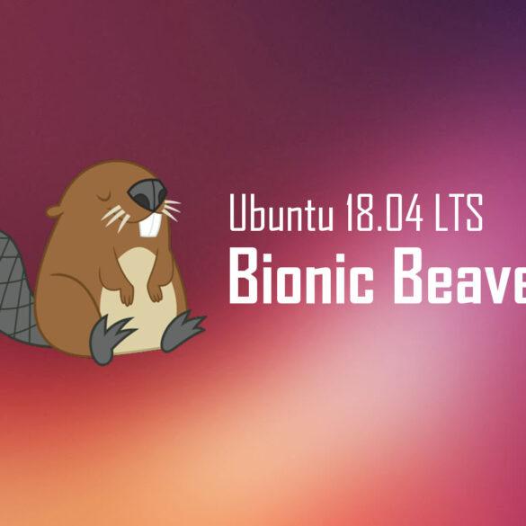 Ubuntu 18.04 Bionic Beaver