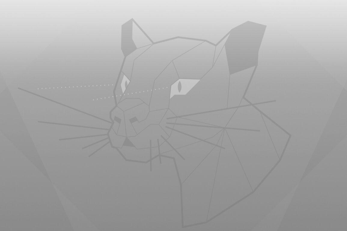 Ubuntu 20.04 Focal Fossa wallpaper greyscale