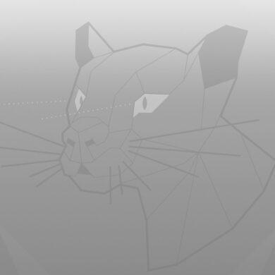 Ubuntu 20.04 Focal Fossa wallpaper greyscale
