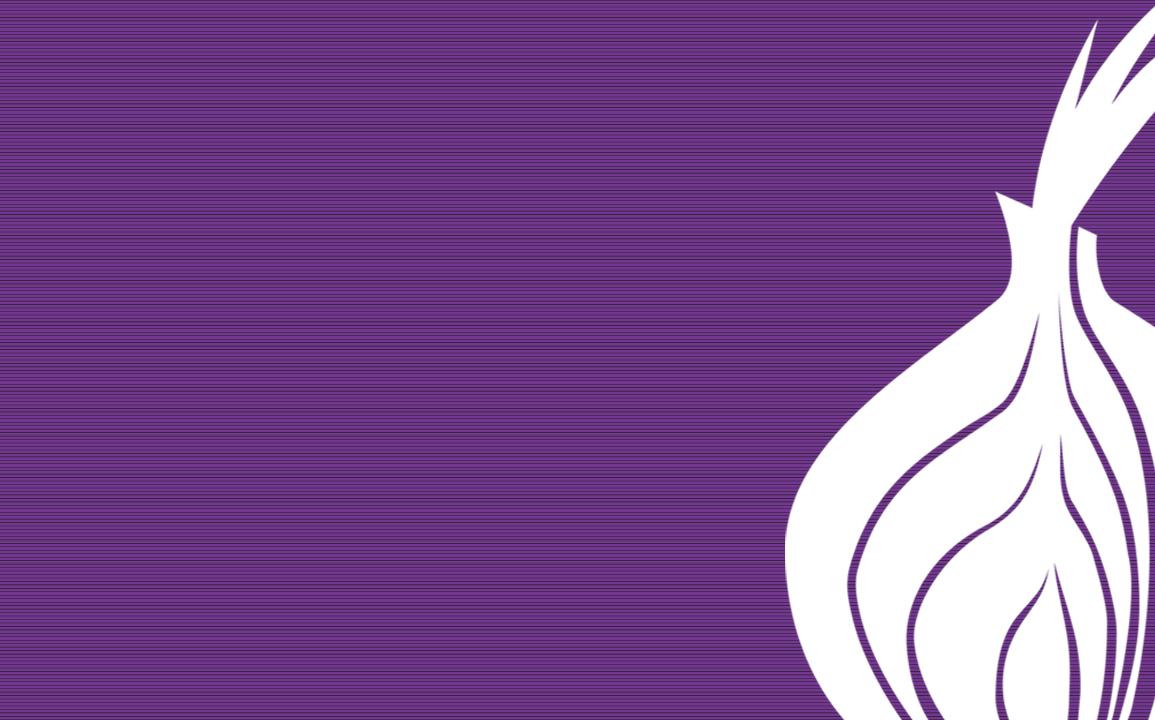 Tor raspberry pi guida