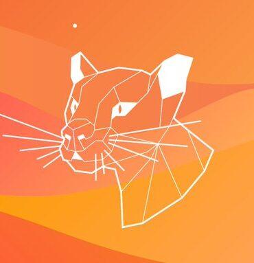 ubuntu 20.04 focal fossa wp
