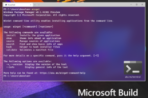 windows 10 package manager winget