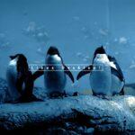 linux 5.7 wallpaper