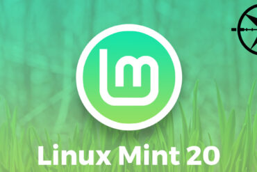 linux mint 20 snap snapd Canonical Ubuntu