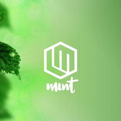 linux mint 20 beta