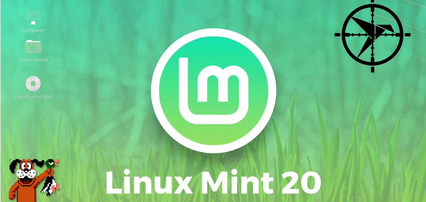 linux mint 20 snap snapd Canonical Ubuntu