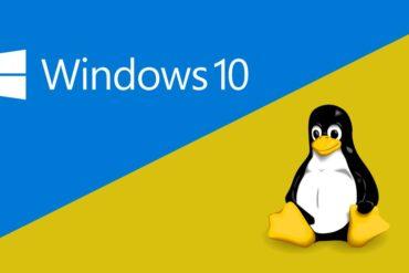microsoft windows linux