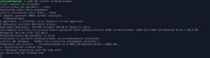 linux mint 20 snap snapd Canonical Ubuntu Chromium