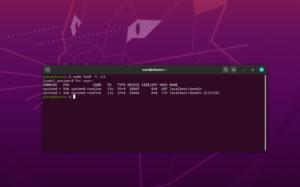 ubuntu porta 53 systemd-resolve