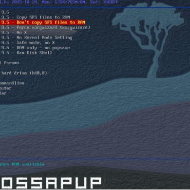 puppy linux fossapup 9.5 boot