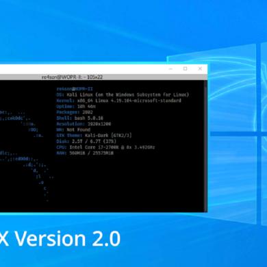 win-kex wsl2 kali linux