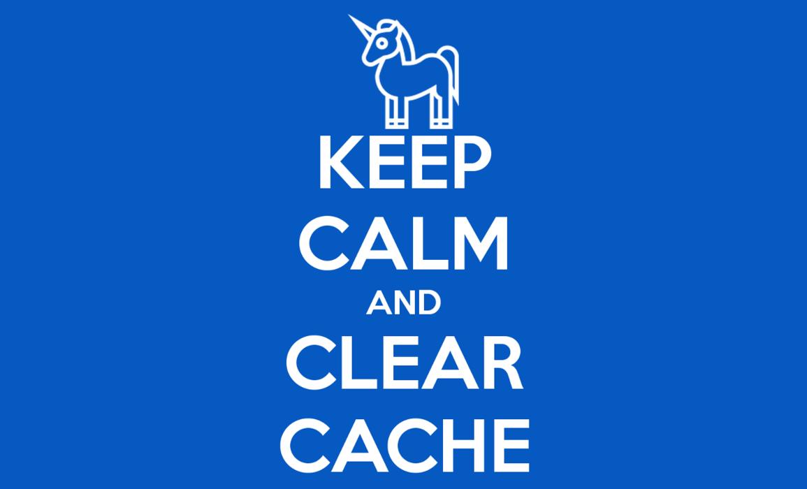 apt cache clean