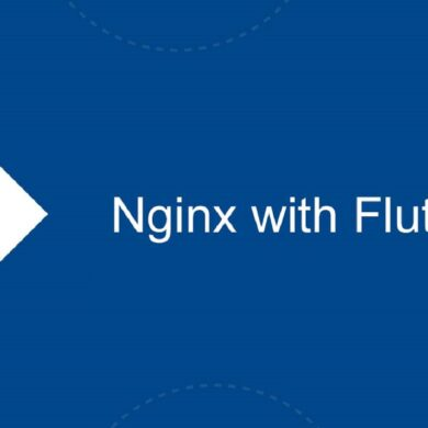 nginx with flutter