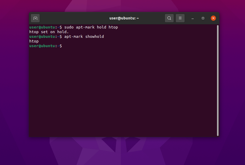 apt ubuntu showhold package