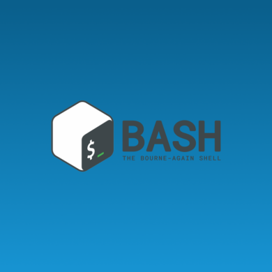 bash wp