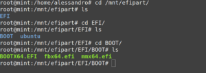 efi partition root user