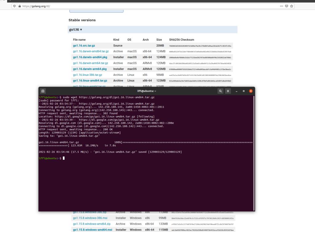 [GUIDA] Ecco come installare Go (Golang) su Ubuntu Linux