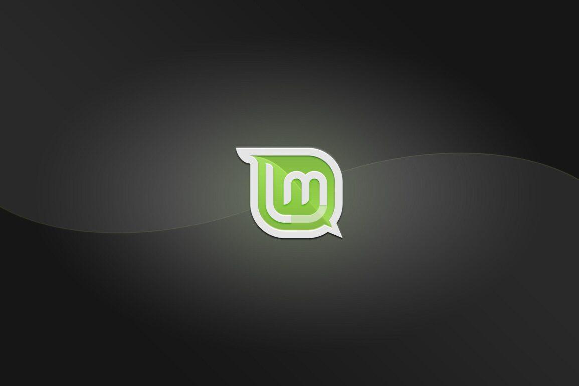 Linux Mint sgrida i suoi utenti: siete irresponsabili, aggiornate il sistema!