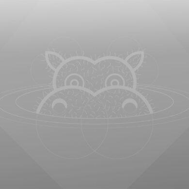 ubuntu 21-04 hirsute hippo-greyscale