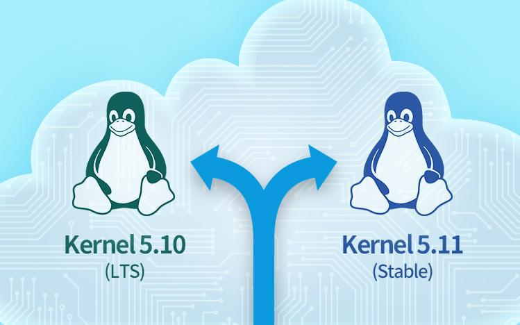deepin 20.2 dual kernel