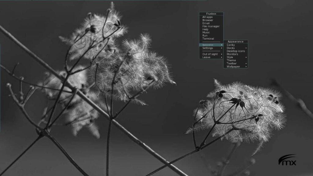 mx linux 19.4